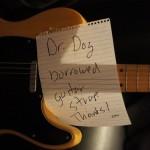 dr-dog-16